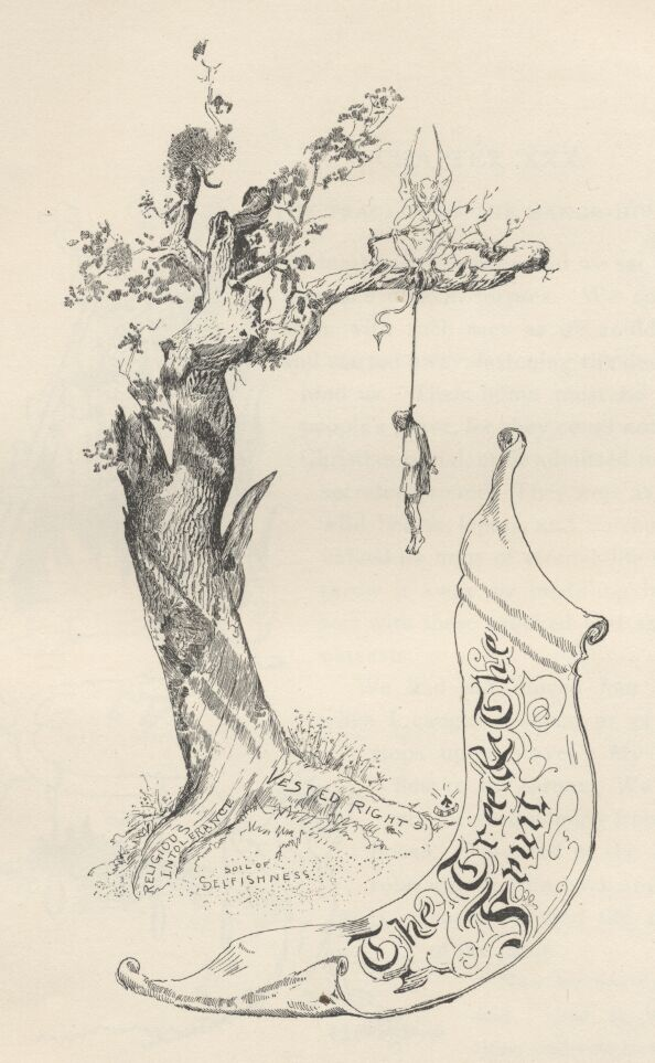 Tree & the Fruit